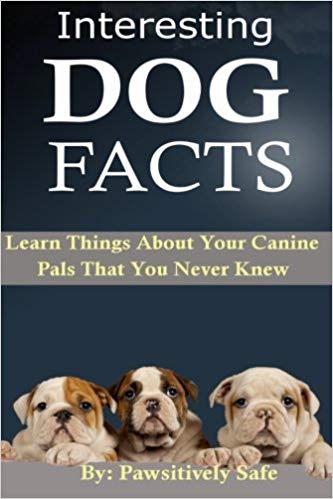 Pawsitively Safe's Interesting Dog Facts: Learn Things About Your Canine Pals That You Never Knew (Volume 1, Paperback)