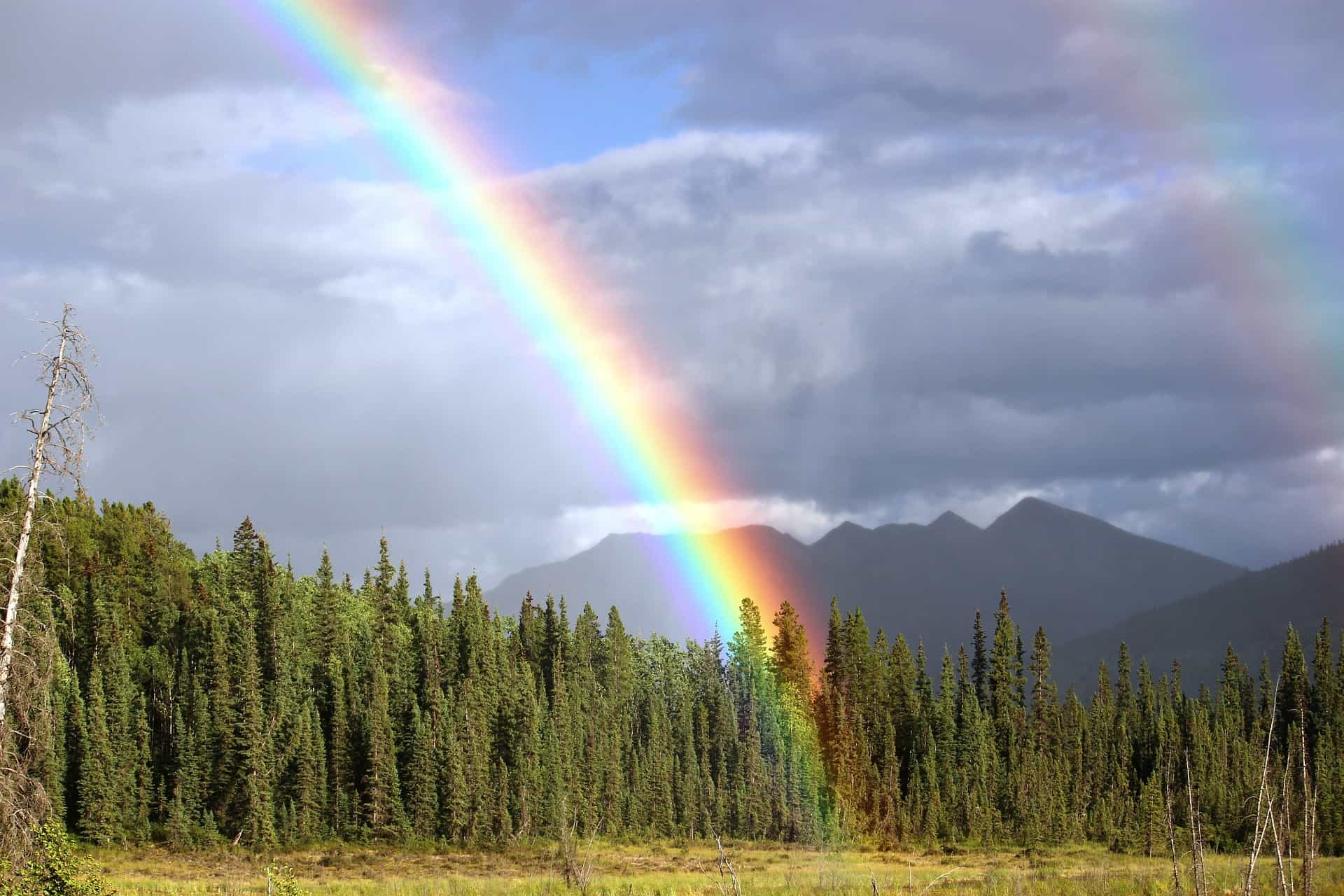 Amazing Fun Facts About The Rainbow We Often Witness